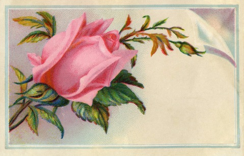 Rose-Calling-Card-Image-GraphicsFairy3